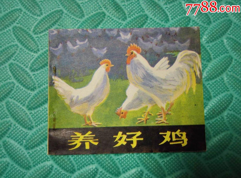好�9i�9�)���_养好鸡i
