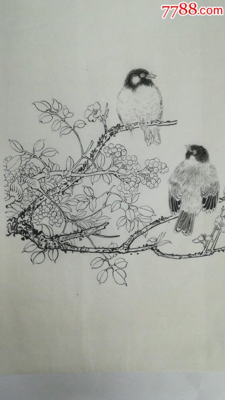 王满良工笔白描花鸟画
