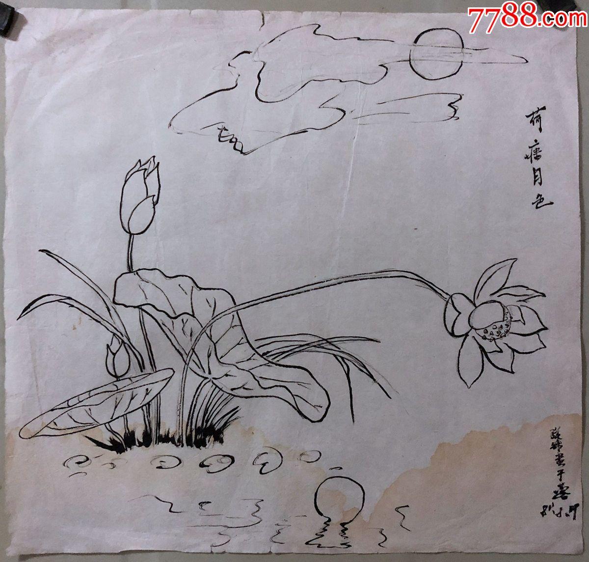 国画原作,475,张书珺,工笔白描稿,花鸟画,荷花,1981年,有款【成都故纸
