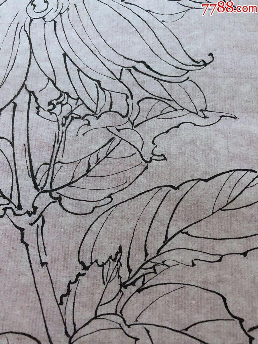 国画原作,619,工笔白描花鸟画