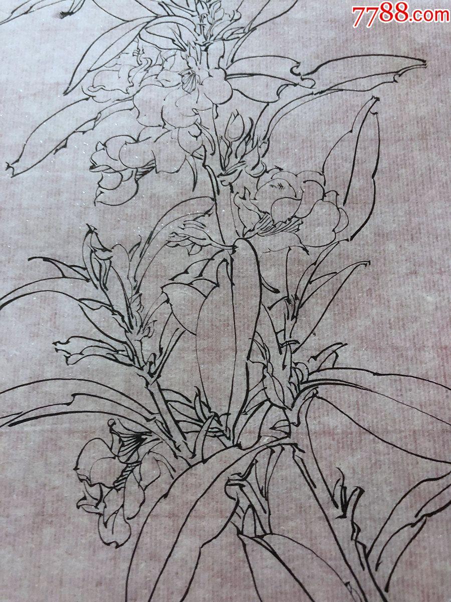 国画原作,641,工笔白描花鸟画