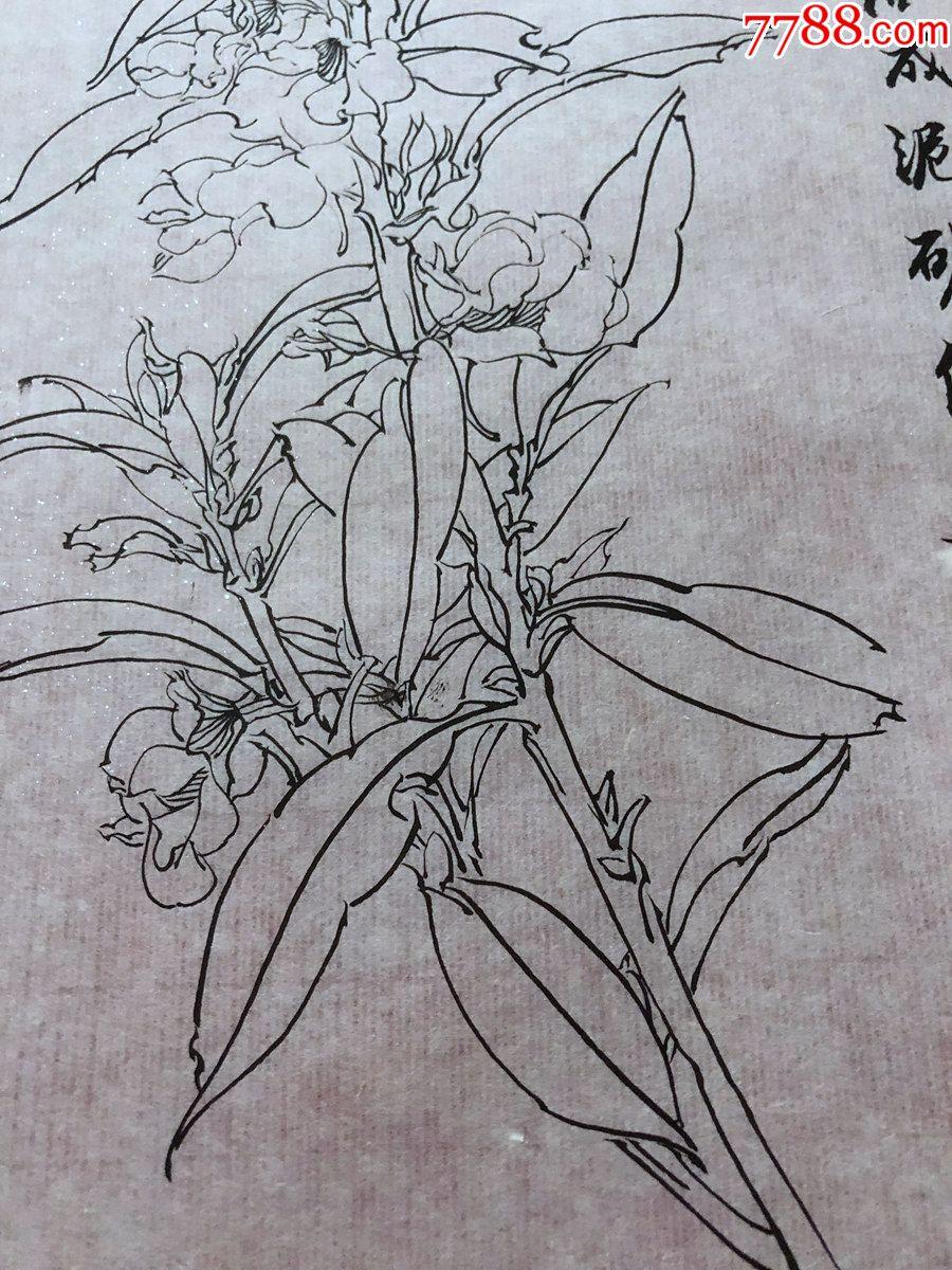 国画原作,643,工笔白描花鸟画