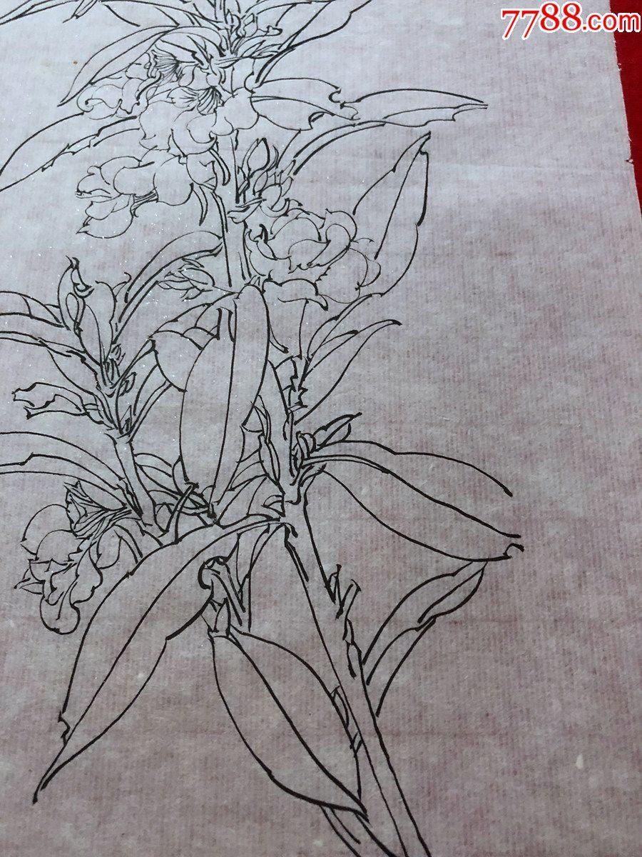国画原作,648,工笔白描花鸟画