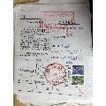 包裹单-¥3 元_包裹快件单_7788网