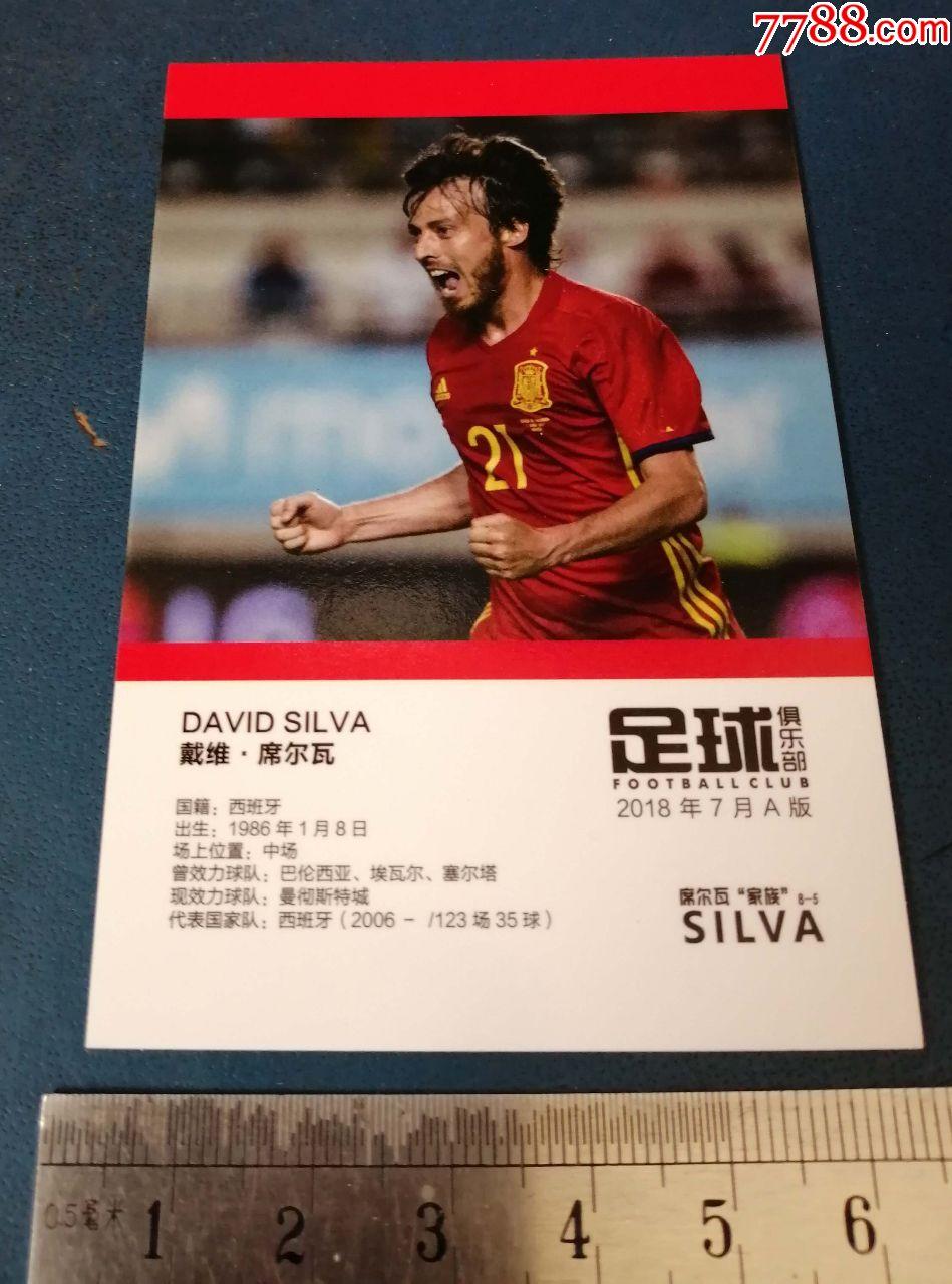 足球明星---戴维.席尔瓦