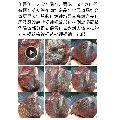 伊丁隕石原石(se64032017)_7788舊貨商城__七七八八商品交易平臺(7788.com)