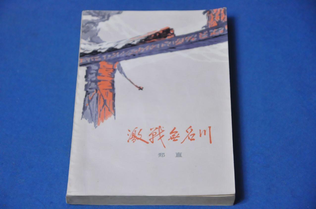 激战无名川--人民文学出版社(se69766108)_
