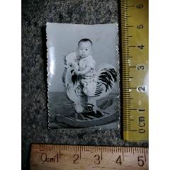 娃骑木鸡玩具.老照片(se71496479)_7788收藏__收藏热线