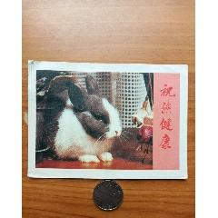 兔子(se73275738)_7788收藏__收藏熱線