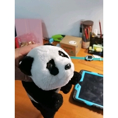 電動爬行熊貓(se77238566)_7788舊貨商城__七七八八商品交易平臺(7788.com)