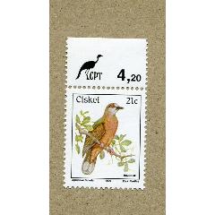 南非西凱斯90年鳥類1全新(se77255551)_7788舊貨商城__七七八八商品交易平臺(7788.com)