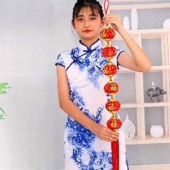 新年裝飾品植絨燈籠~福字6連串(se77360424)_7788舊貨商城__七七八八商品交易平臺(7788.com)