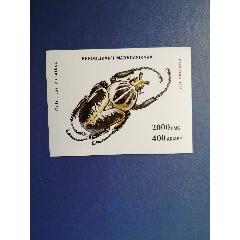 馬達加斯加郵票1993年昆蟲甲蟲小型張(無郵戳新票)(se77374234)_7788舊貨商城__七七八八商品交易平臺(7788.com)