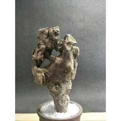 太湖石(se77381349)_7788舊貨商城__七七八八商品交易平臺(7788.com)