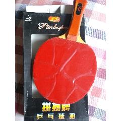乒乓球拍(se77431759)_7788舊貨商城__七七八八商品交易平臺(7788.com)