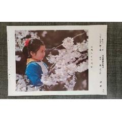 春妞(se78097045)_7788舊貨商城__七七八八商品交易平臺(7788.com)