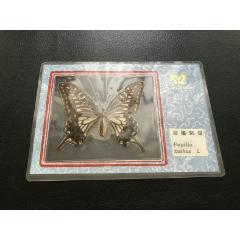012181蝴蝶標本(se78001872)_7788舊貨商城__七七八八商品交易平臺(7788.com)