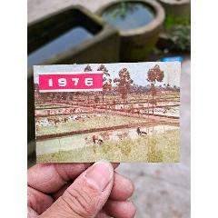 1976年日歷一本(se78092578)_7788舊貨商城__七七八八商品交易平臺(7788.com)