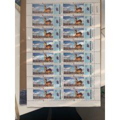 可可西里自然保護區藏羚羊一整版16枚(se78105078)_7788舊貨商城__七七八八商品交易平臺(7788.com)