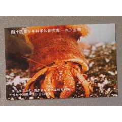 水下生物(se78119082)_7788舊貨商城__七七八八商品交易平臺(7788.com)
