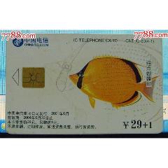 CNT-IC69海洋動物4-1)(se78251317)_7788舊貨商城__七七八八商品交易平臺(7788.com)