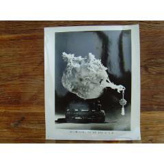 超大尺寸:1979年全國工藝美術藝人、創作設計人員代表大會,北京玉器廠王仲元(中-¥68 元_老照片_7788網