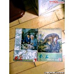 化石1978年第2.3期两本合售(se82859173)_7788收藏__收藏热线
