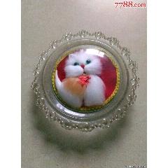 猫咪(se83254856)_7788收藏__收藏热线
