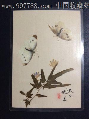 手工制作动植物标本【天长地久】