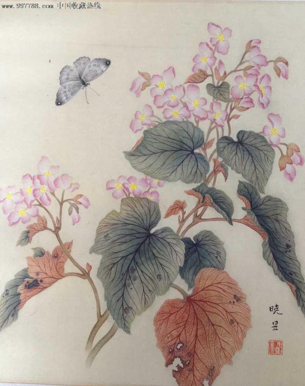 马晓昱工笔画-花卉3