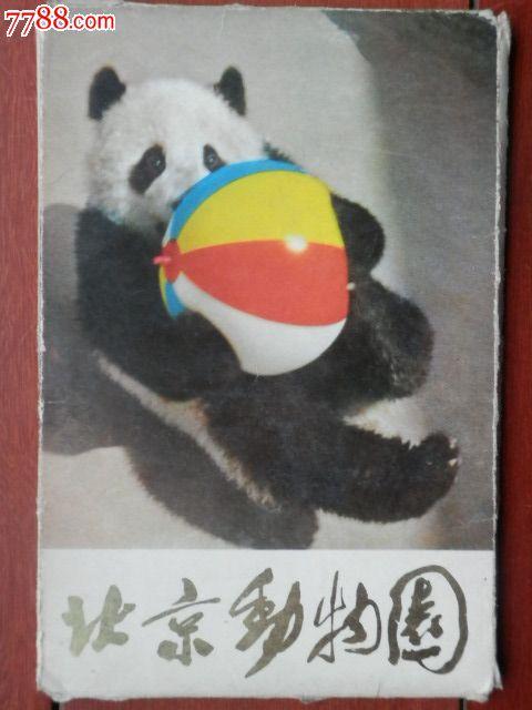北京动物园动物明信片11张