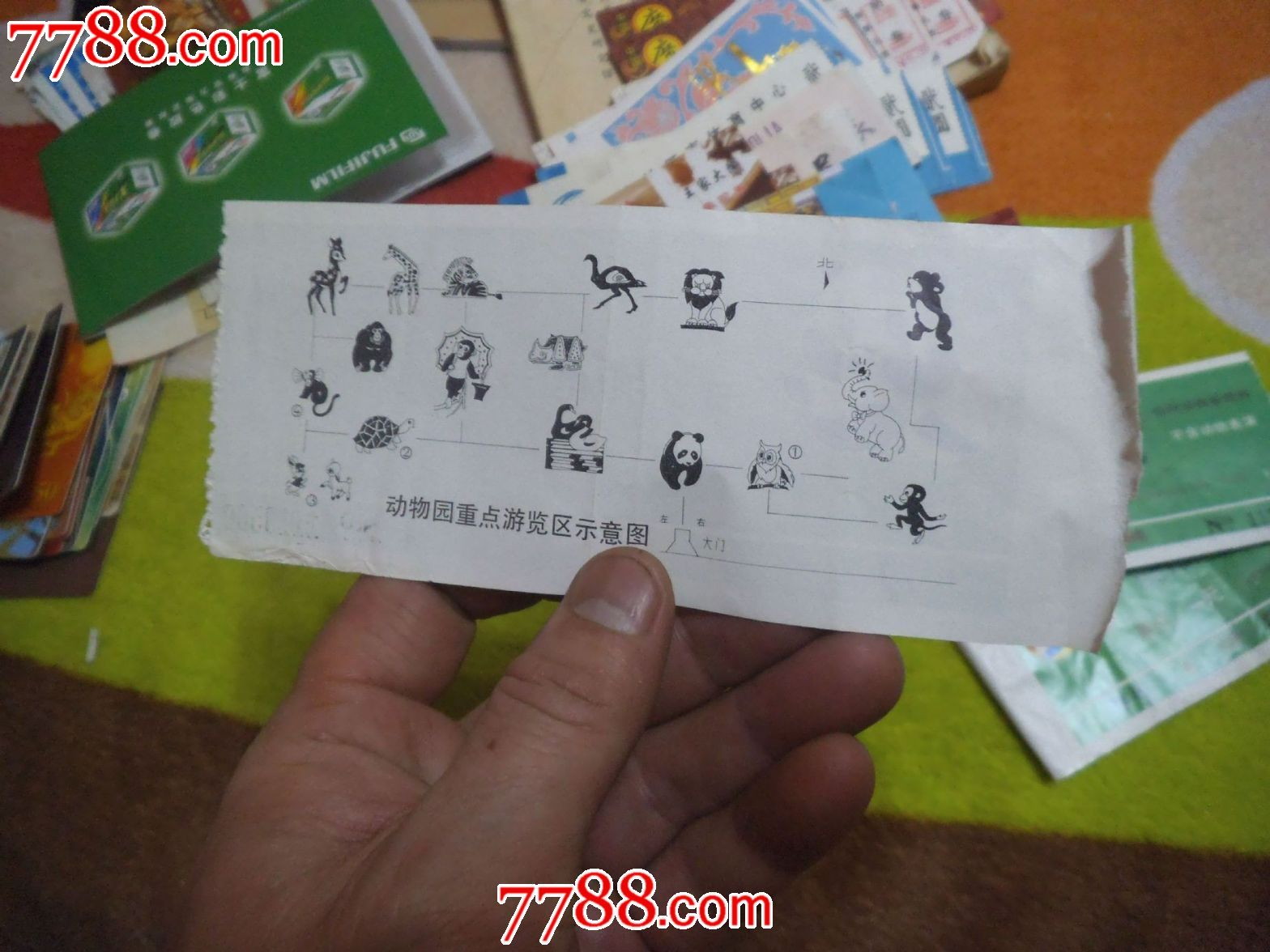 北京动物园特种动物参观券