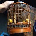鳥籠子(se30698783)_7788舊貨商城__七七八八商品交易平臺(7788.com)