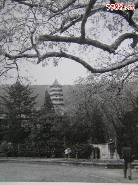 老照片【80年代,南京名胜风景照片,12张】