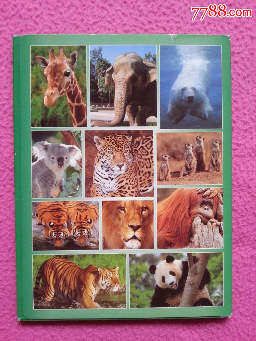 圣地亚哥动物园(动物类明信片)