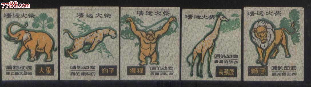 广东清远火柴厂1985年《哺乳动物之最-》贴标5枚/套正面图