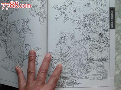 工笔画线描动物画法