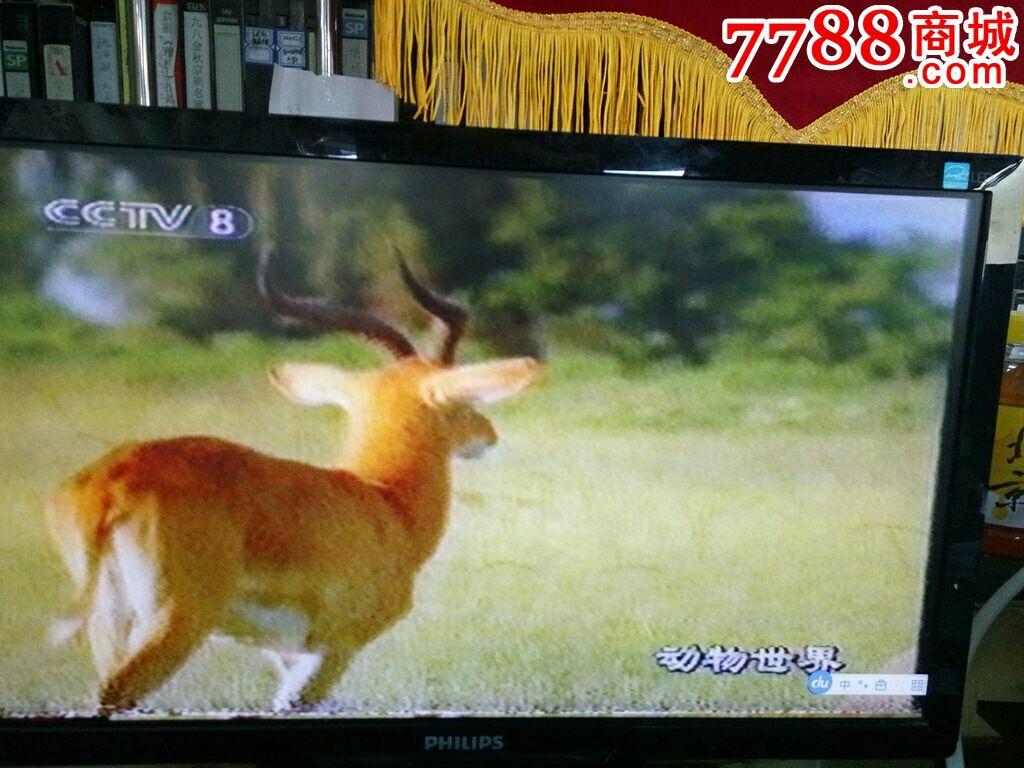 赵忠祥配音《动物世界》3小时数集一本